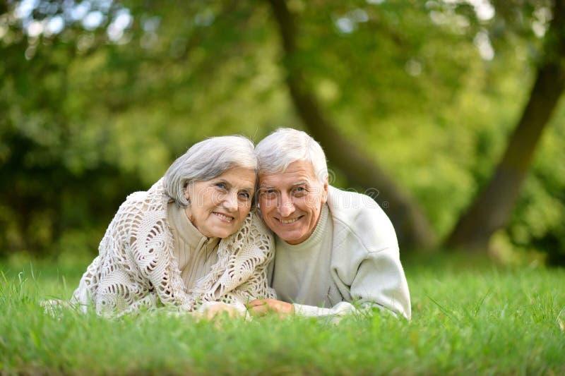 Портрет пожилых пар лежа на зеленой траве в лете паркует стоковые изображения
