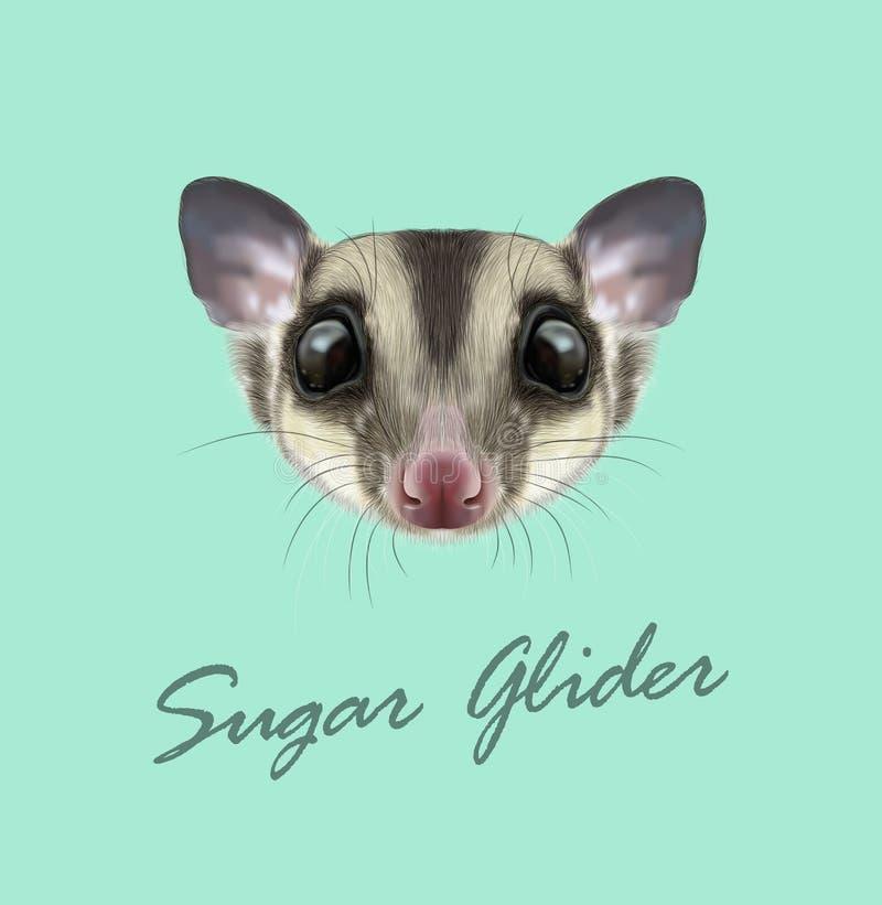 Портрет проиллюстрированный вектором планера сахара иллюстрация штока