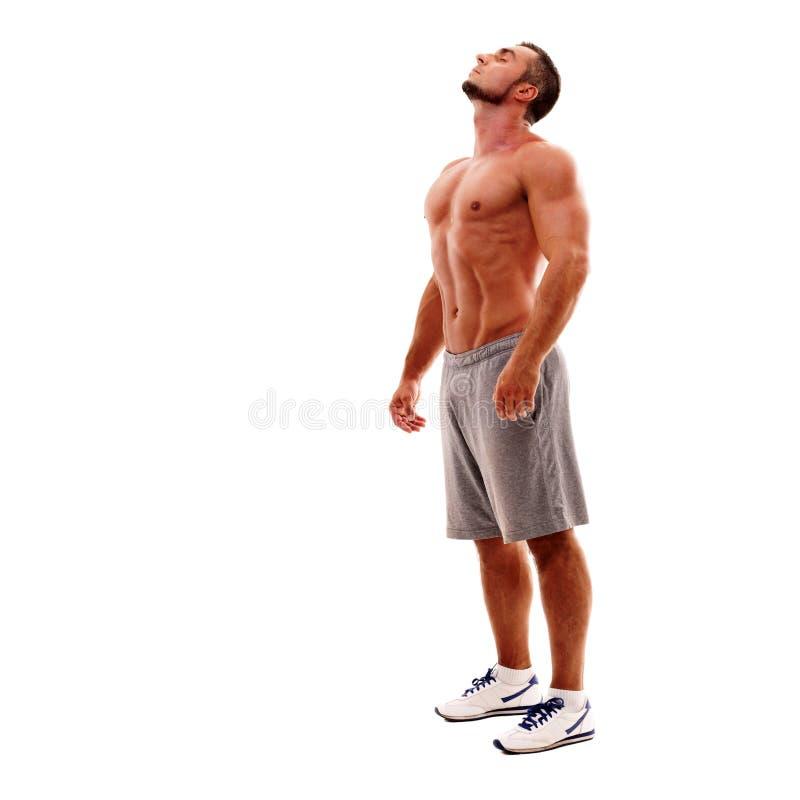 Портрет расслабленного красивого спортсмена стоковые изображения