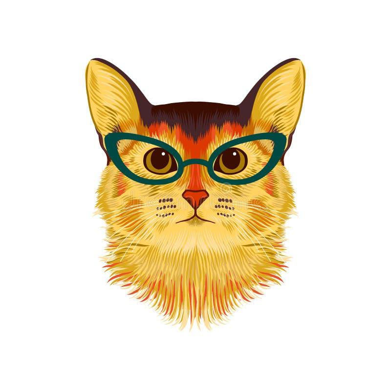 Портрет руки вычерченный абиссинского кота в стеклах Красочная иллюстрация вектора изолированная на белизне бесплатная иллюстрация