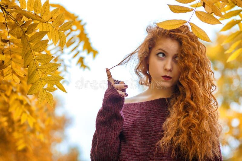 Портрет рыжеволосой женщины с желтыми листьями, настроения осени стоковое фото rf