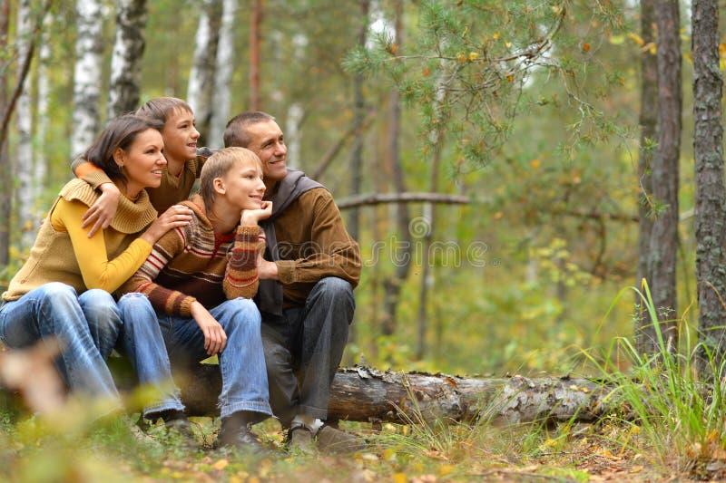 Портрет семьи из четырех человек в парке стоковые изображения