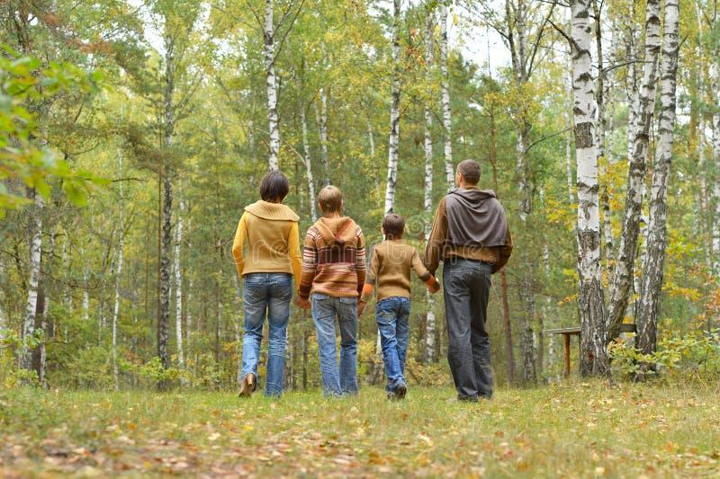 Портрет семьи из четырех человек имея потеху в лесе осени стоковые фото