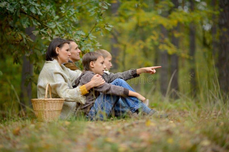 Портрет семьи из четырех человек отдыхая в лесе осени стоковое изображение rf