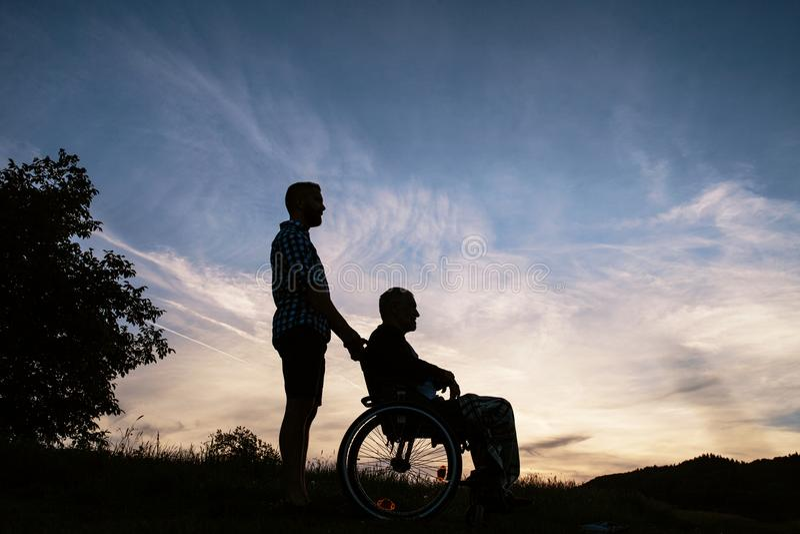 Портрет силуэта взрослого сына с старшим отцом в кресло-коляске в природе на заходе солнца стоковые фото