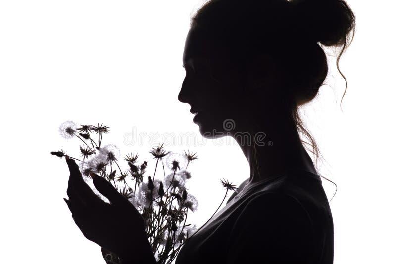 Портрет силуэта девушки с букетом сухих цветков, лобовым профилем мечтательной молодой женщины на белой изолированной предпосылке стоковые фотографии rf
