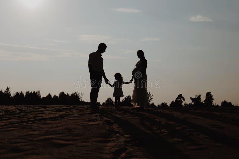 Портрет силуэта красивой молодой семьи в ожидании newborn Человек и женщина стоя лицом к лицу с их стоковая фотография rf