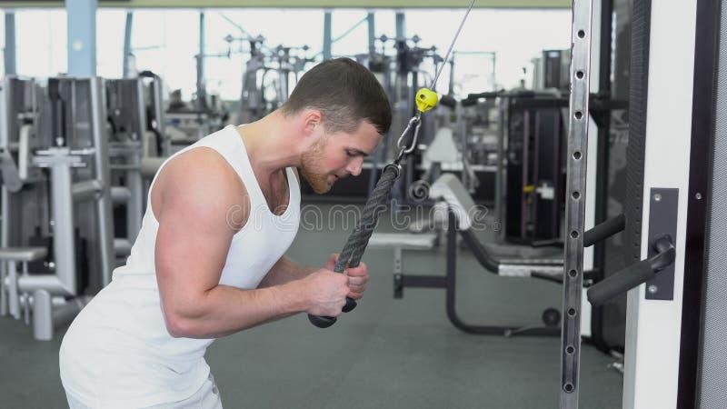 Портрет сильного атлетического человека на тренировке спортзала на приборе блока стоковые фото