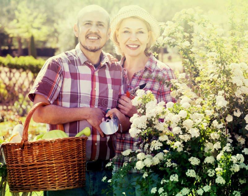 Портрет симпатичной пары позаботить о зеленые растения в стоковое фото rf