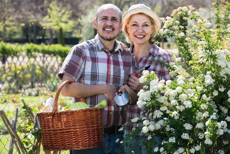 Портрет симпатичной пары позаботить о зеленые растения в стоковые изображения rf