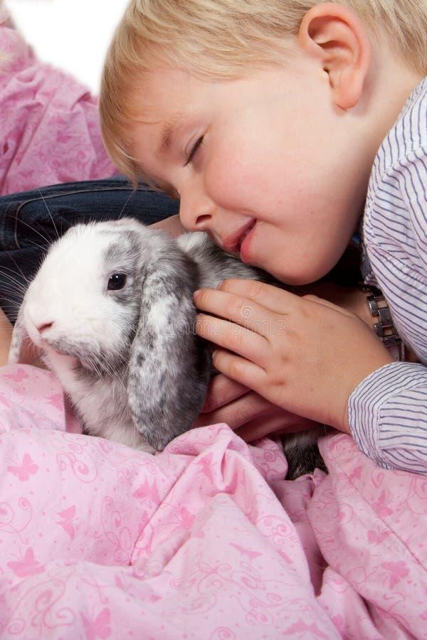 Портрет скандинавского молодого мальчика в студии с кроликом стоковое фото