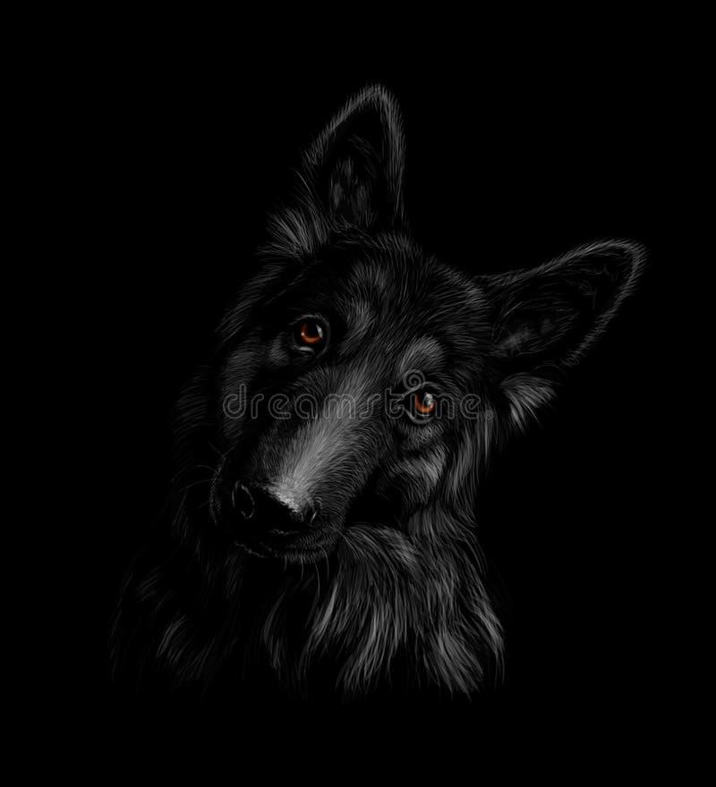 Портрет собаки немецкой овчарки на черной предпосылке иллюстрация вектора