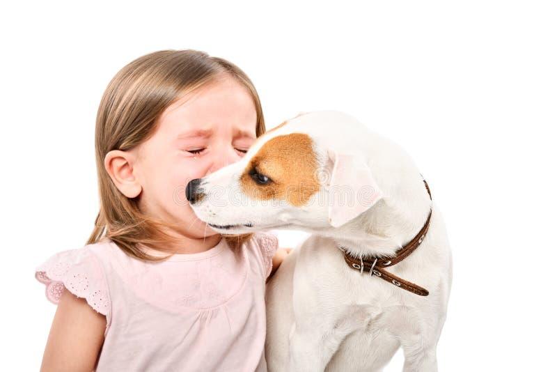 Портрет собаки, успокаивая маленькой плача девушки стоковая фотография
