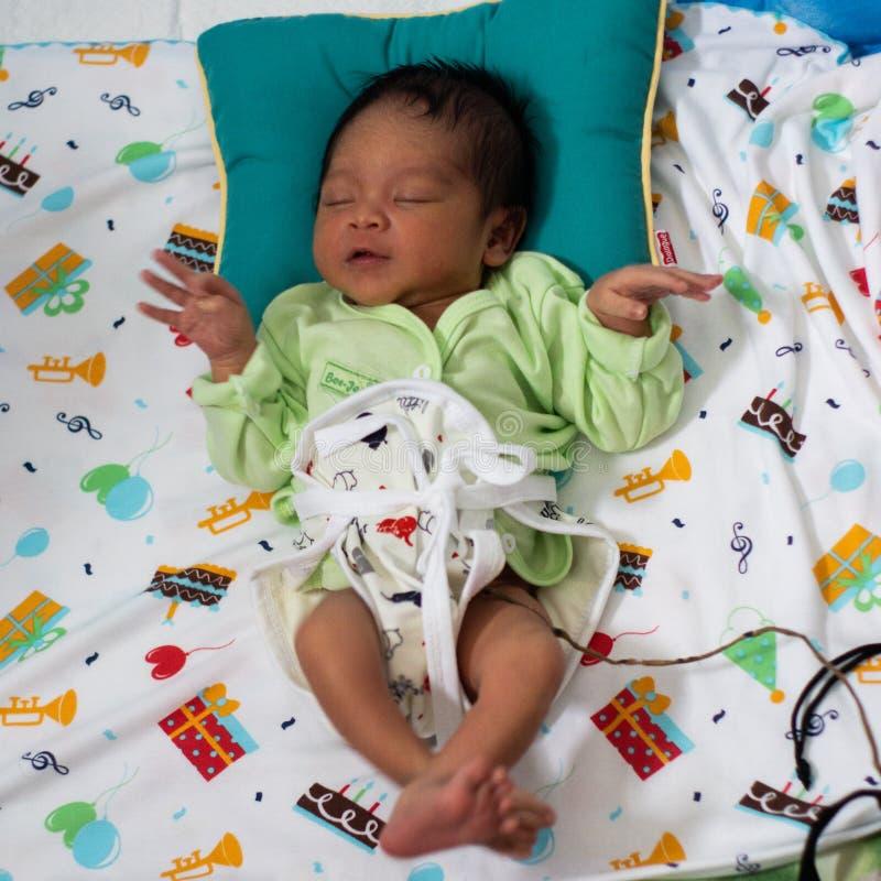 Портрет суточного мальчика 42 рожденного в рождении лотоса Не похож на младенцев вообще, пуповина младенца выведена для присоедин стоковые фотографии rf