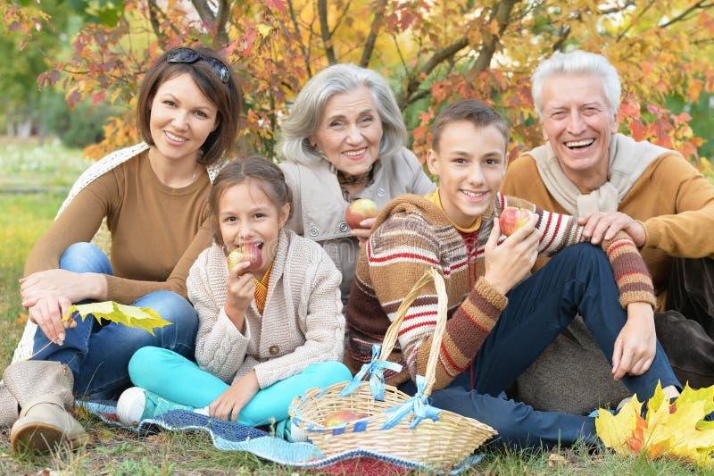 Портрет счастливой красивой усмехаясь семьи ослабляя в парке осени стоковое фото