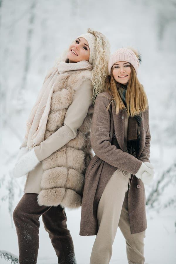 Портрет 2 счастливых белокурых женщин в шляпе на прогулке в лесе зимы стоковые фото
