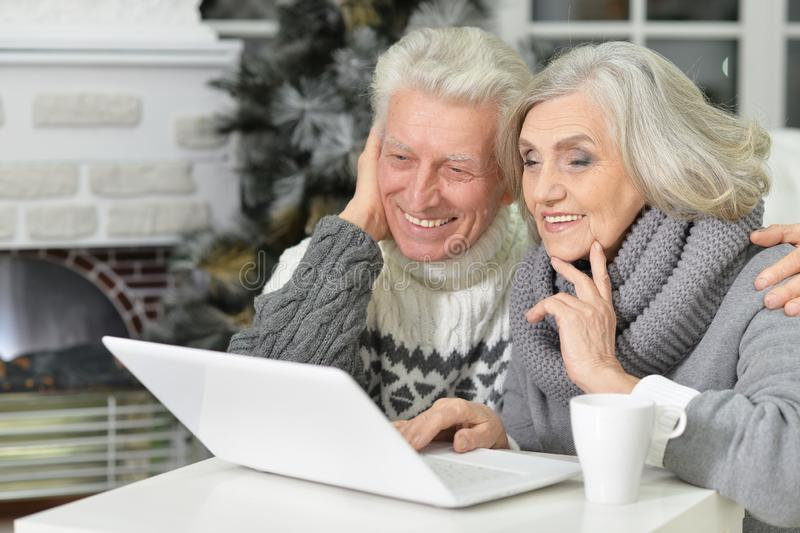 Портрет счастливых красивых старших пар используя компьтер-книжку стоковое изображение rf