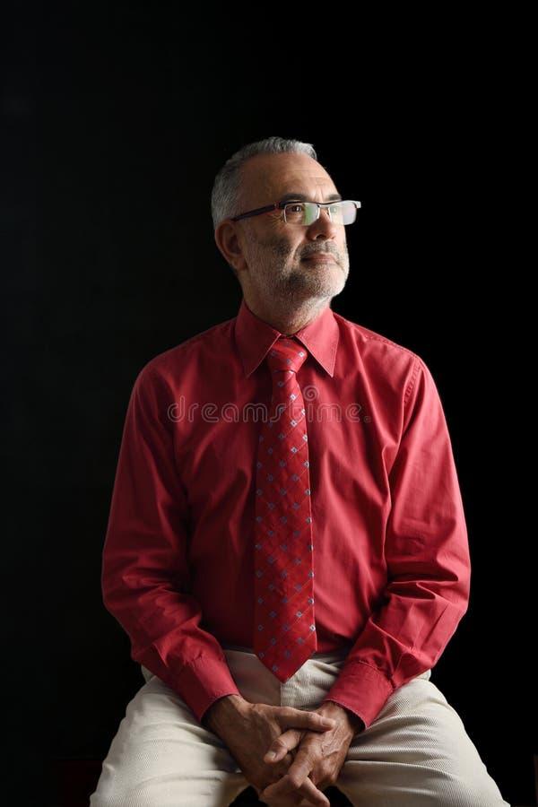Портрет элегантного зрелого человека, стоковые фотографии rf