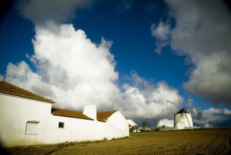 Португальская ферма стоковые фото