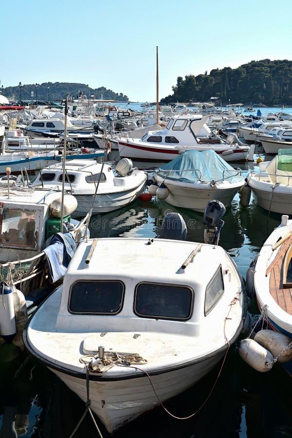 Порт Rovinj стоковая фотография rf