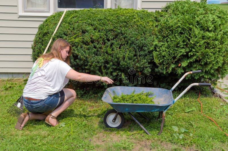 Порция подростка с работой двора стоковые фото