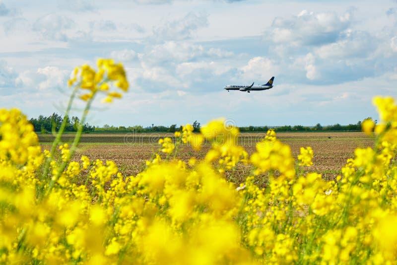 Посадка самолета Ryanair на международном аэропорте Henri Coanda, как увидено от поля рапса в районе Pipera стоковые фото