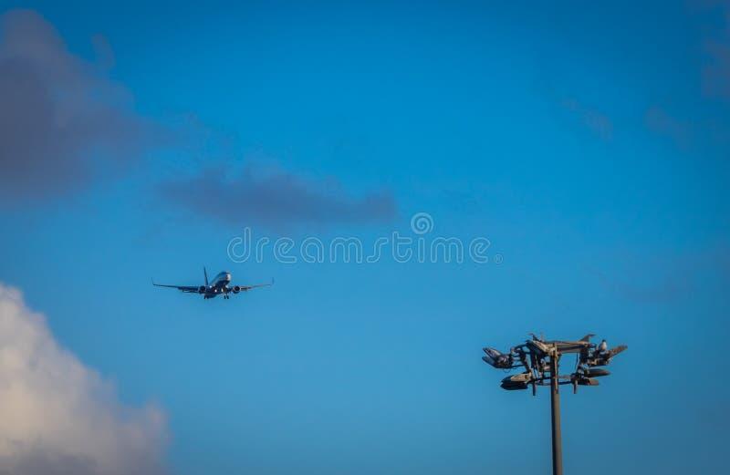 Посадка самолета Ryanair стоковые фото