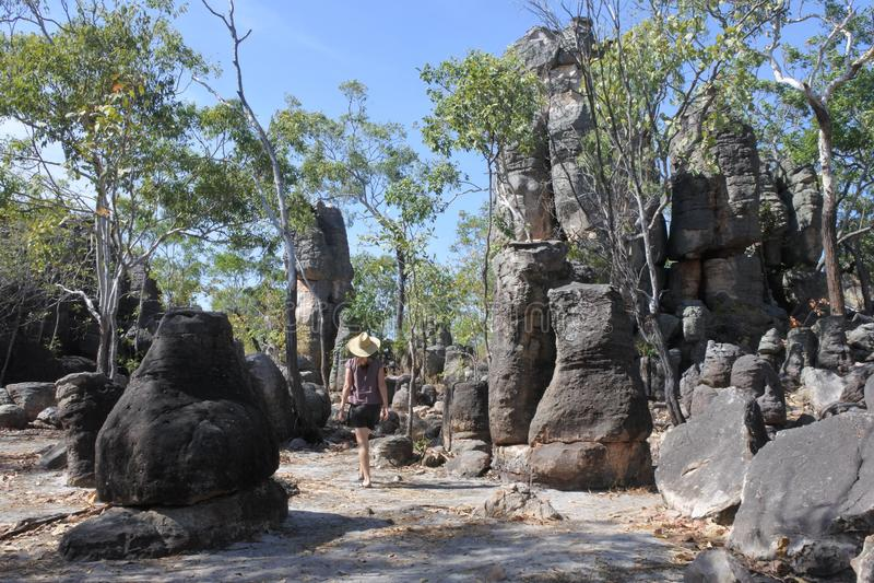 Посещение женщины туристское на потерянных северных территориях Австралии национального парка Litchfield города стоковые изображения rf