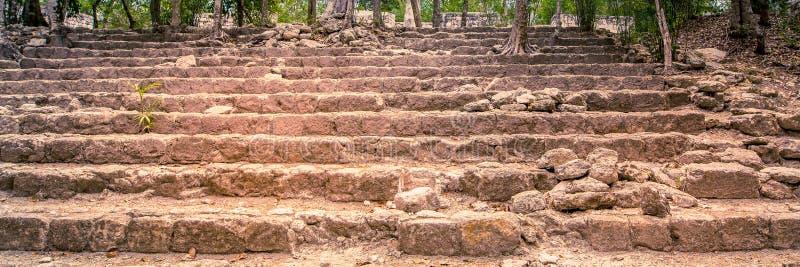 Посещение старого города Майя Calakmul - южные Юкатан - Mex стоковые изображения