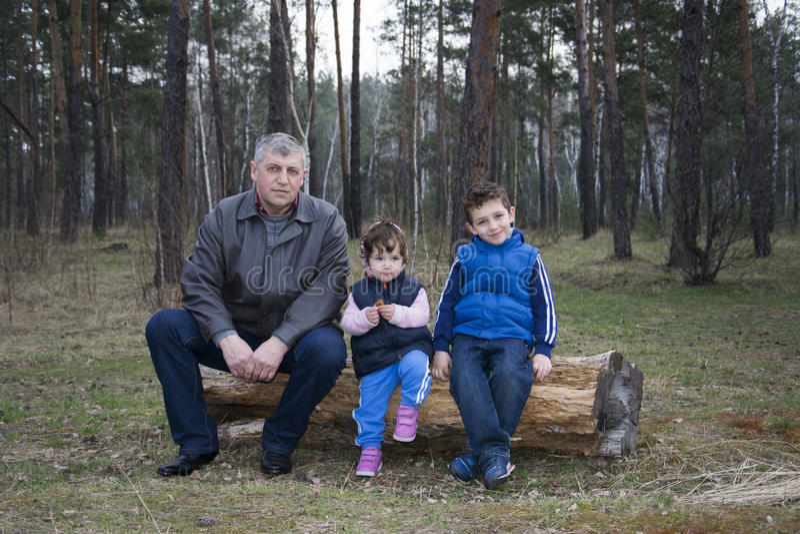 Поскачите в сосновом лесе сидя на журнале с его grandchildre стоковая фотография