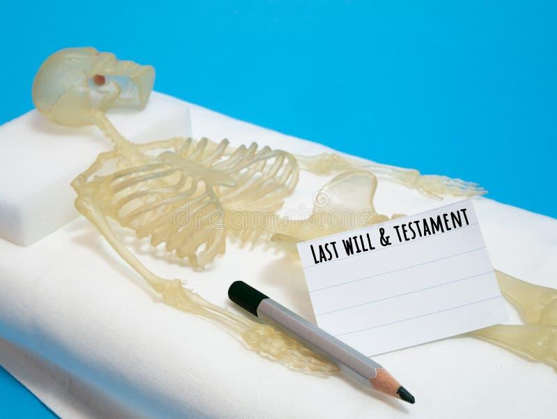 Последние воля и концепция завета с человеческим скелетом стоковые фотографии rf