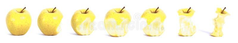 последовательность еды яблока стоковая фотография rf