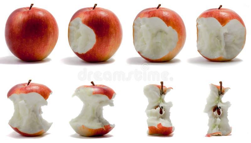 последовательность яблока стоковая фотография rf