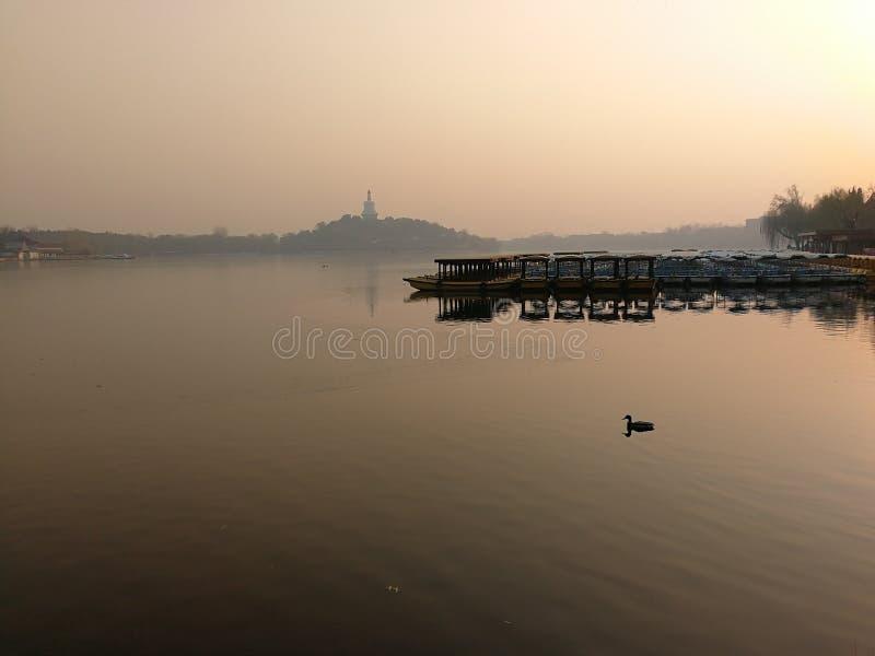 После полудня парка Beihai, отклонение от нормального положения уток стоковые изображения