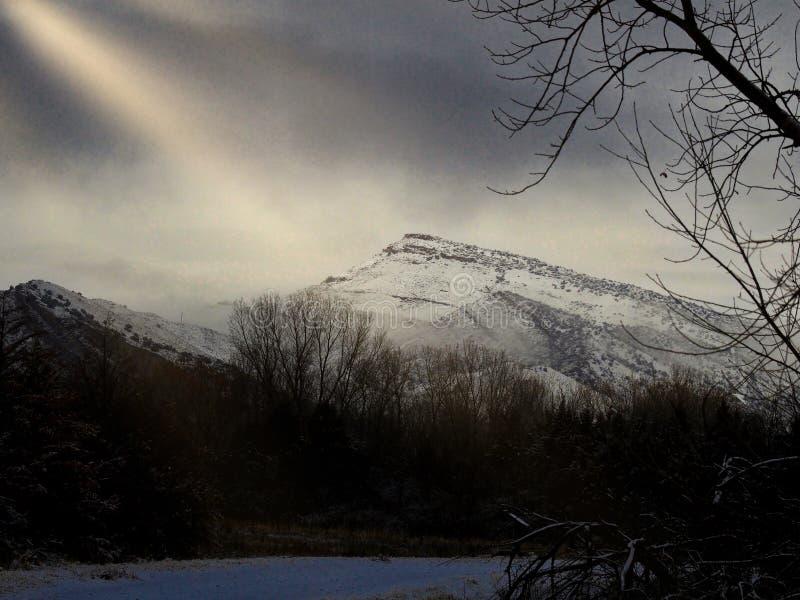После снежной ночи стоковое изображение rf