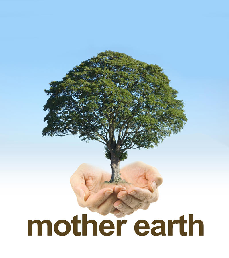 Посмотрите после мать-земли стоковое изображение rf