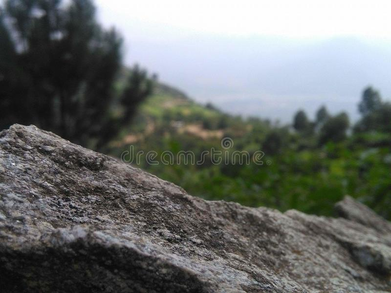 посмотрите стоковое фото