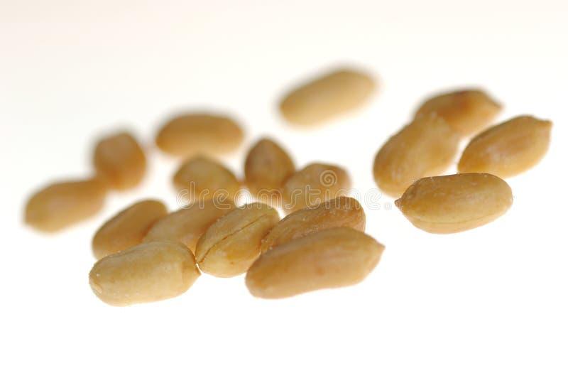 посоленные арахисы стоковые фотографии rf