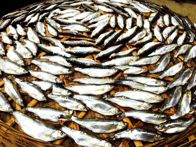 Посоленные рыбы с китайскими характеристиками в воздухе стоковое изображение rf