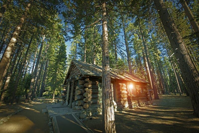 Постаретая кабина леса стоковые фотографии rf