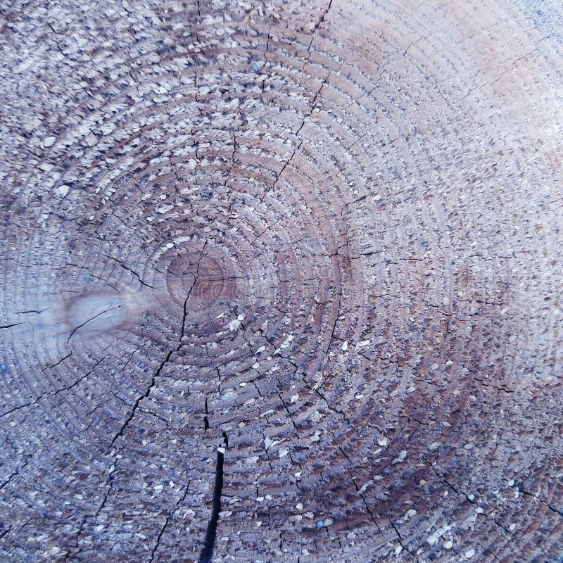 Постаретая grungy деревенская деревянная текстура предпосылки стоковое изображение rf