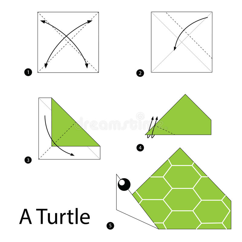 Постепенные инструкции как сделать origami черепаху иллюстрация вектора