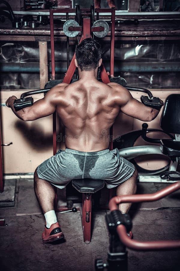 Построитель тела делая тяжеловесную тренировку для задней части стоковое фото