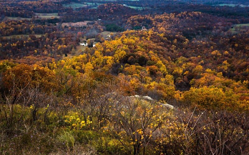 Последние цвета в долине стоковое изображение rf