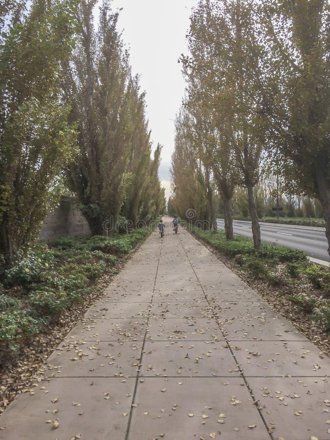 После пути длинных очередей на доме горы, Калифорния стоковое изображение rf