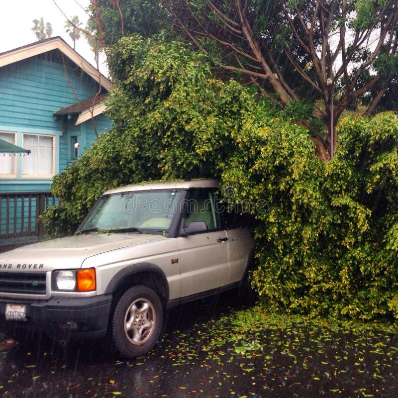 После шторма стоковое изображение rf