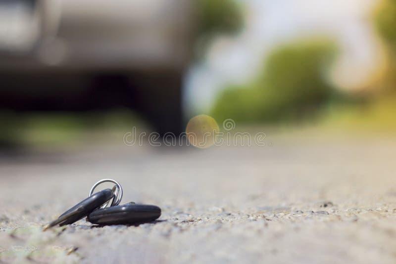 Потерянные ключи автомобиля на упаденных иглах голубого спруса заднее bokeh предпосылки нерезкости стоковая фотография