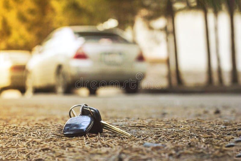 Потерянные ключи автомобиля на упаденных иглах голубого спруса заднее bokeh предпосылки нерезкости стоковые изображения rf