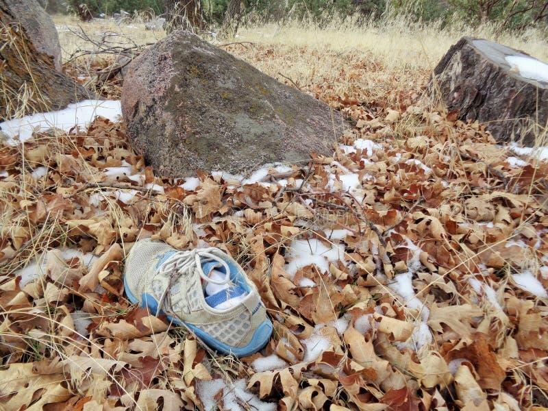 Потерянный ботинок найденный в последних древесинах зимы стоковое изображение rf
