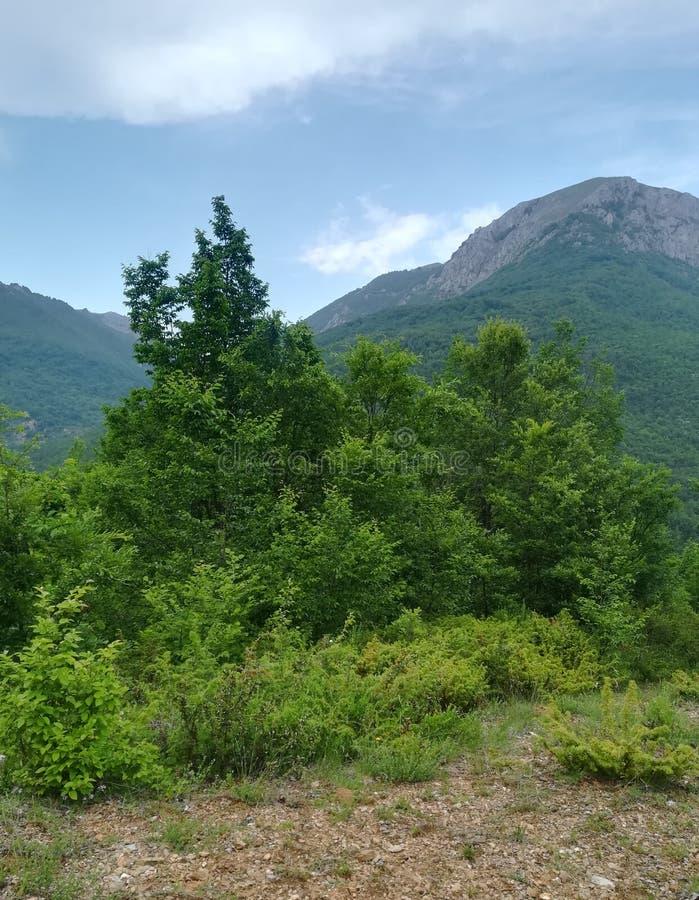 Потерянный в горах стоковые изображения rf